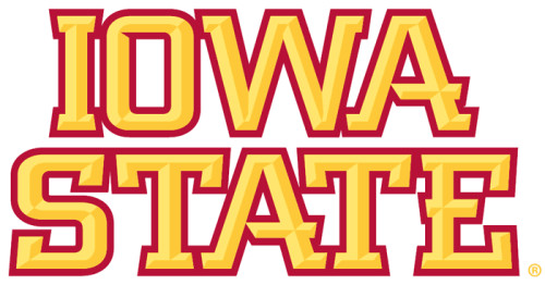 Iowa State Cyclones Wordmark Logo Yellow