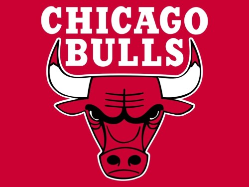 Logo Chicago Bulls Collection