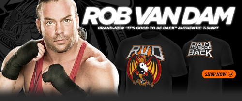 Request Maybe Signature Requests Punk And Rvd