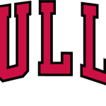 Chicago Bulls Wordmark Logo Red Arched Letters Worn
