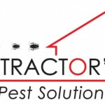Pest Control Solutions And Termite Protection