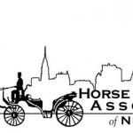 Carriage Horse Retirement Program And Support Working Horses You Can