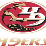 Fan Amazing Design Concept For Every Nfl Team Logo
