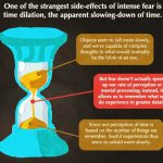 How Fear Works Are You Afraid The Dark