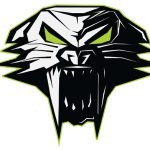 Arctic Cat Logo Fat Removable Decal
