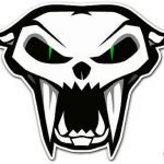 Gallery Images And Information Arctic Cat Logo