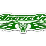 Team Arctic Cat Logo Pdp Snow Flaps For
