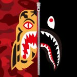 Bape Bathing Ape Twitter Tiger Shark Collection Available Tomorrow