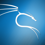 Kali Linux Penetration Testing Ethical Hacking